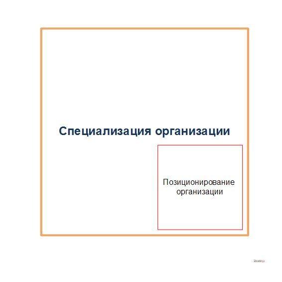 Позиционирование организации, схема места в специализации