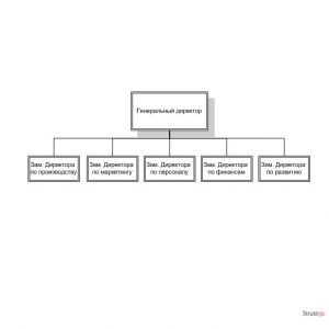 функциональная организационная структура