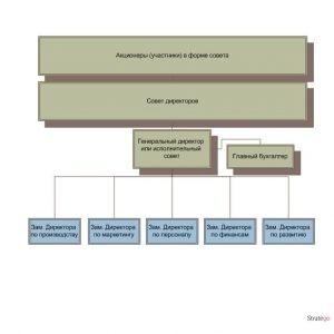 элементы орг структуры